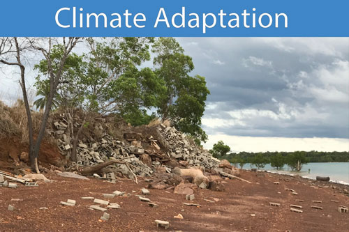 Climate-Adaptation-500.jpg