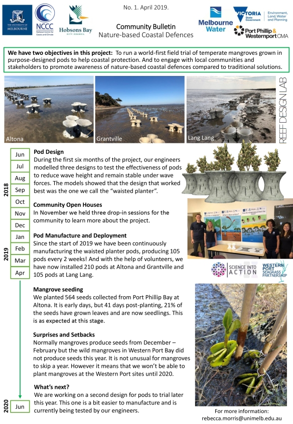 Community Bulletin Nature-based Coastal Defences